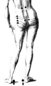 Trattamento a una spina dorsale da un metodo di bubnovsky
